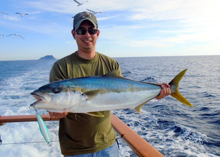 How to Catch California Yellowtail - Tips for Fishing for ...