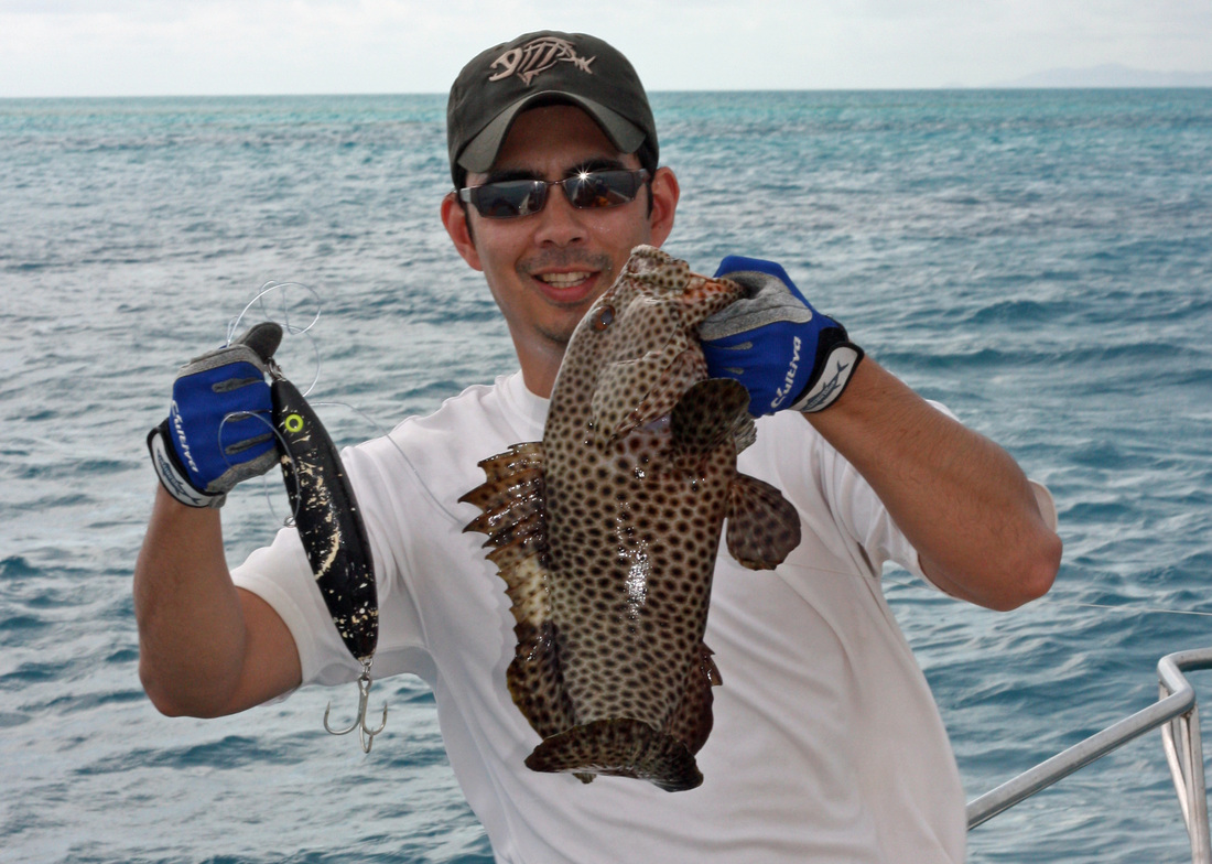 how to catch grouper - tips for fishing for grouper - how to catch, Reel Combo
