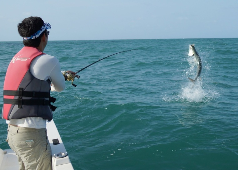 How to catch tarpon tips for fishing for tarpon for Lake tarpon fishing